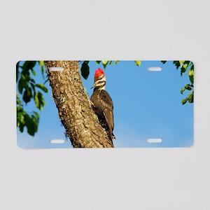 14x6_print Aluminum License Plate
