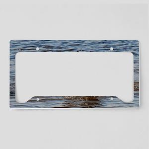 14x6_print License Plate Holder