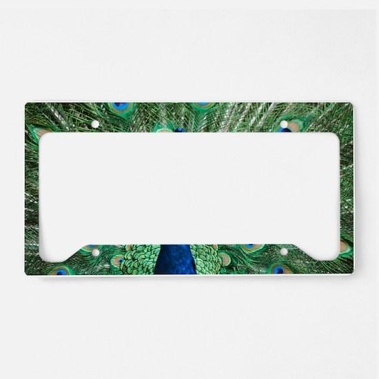 DSC_2928 License Plate Holder