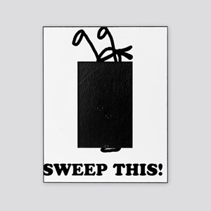 Sweep this! (light) Picture Frame