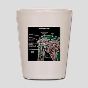 2-shoulder_jointod Shot Glass