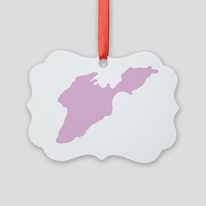 PIB_Isl_Pink_15.35_x_15.35 Picture Ornament