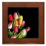 Tulips Framed Tile