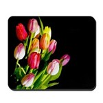 Tulips Mousepad