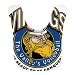 Vikings Logo Bib