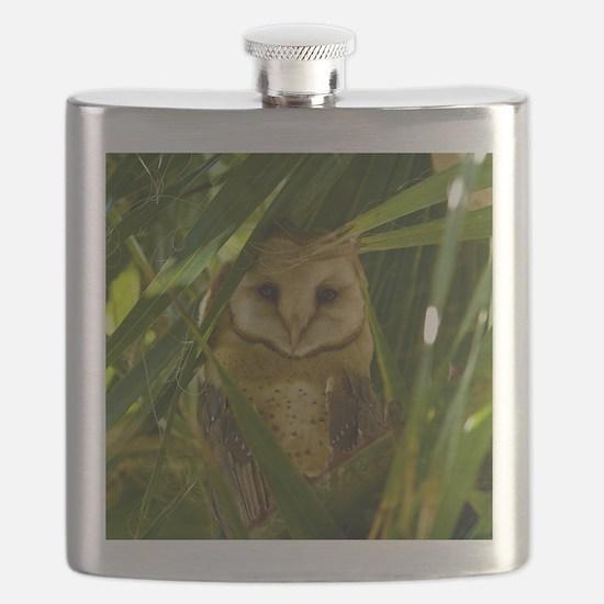 Palm Tree Owlet Flask