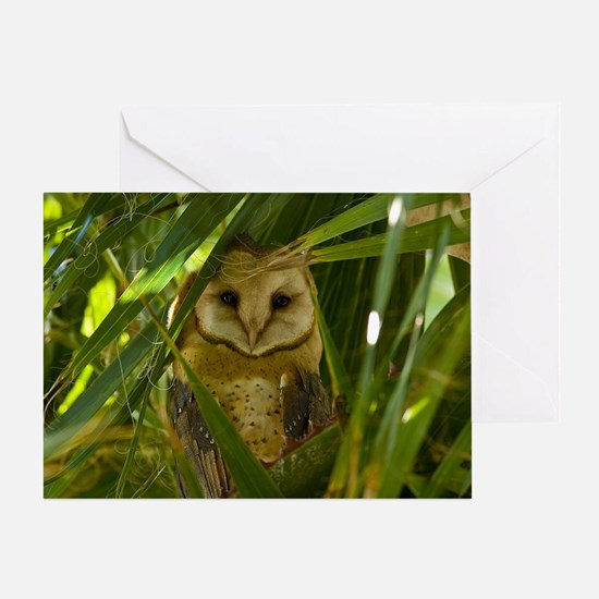 Palm Tree Owlet Greeting Card