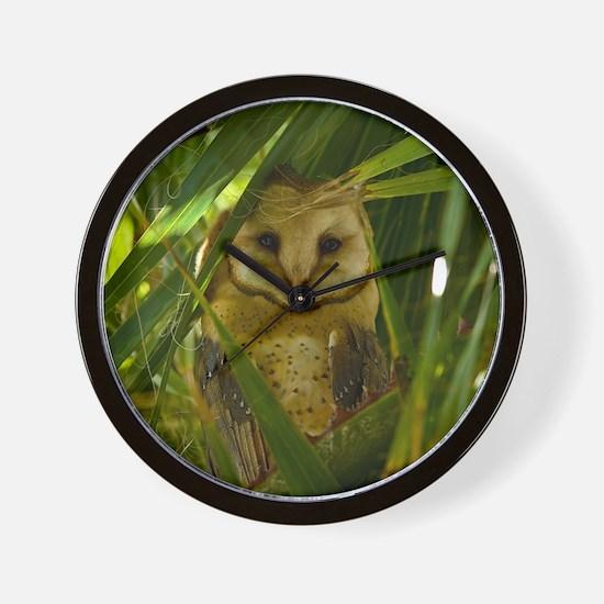 Palm Tree Owlet Wall Clock