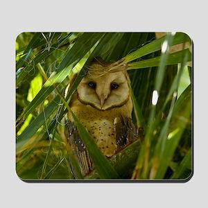 Palm Tree Owlet Mousepad