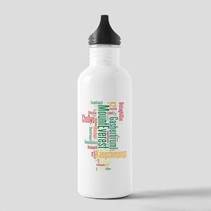 wordle 1 dark mountain Stainless Water Bottle 1.0L
