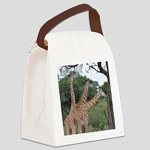 three giraffes Canvas Lunch Bag