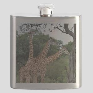 three giraffes Flask