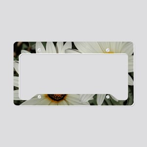 Large Daisies License Plate Holder