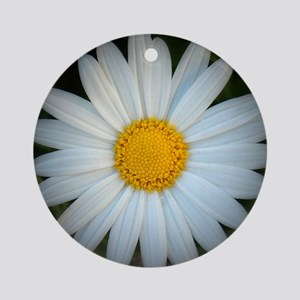 Standout Daisy  Round Ornament