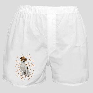 FIN-jrt-autumn-no-frame Boxer Shorts