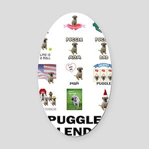 FIN-puggle-VERTCAL-cover Oval Car Magnet