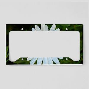 White Daisy License Plate Holder