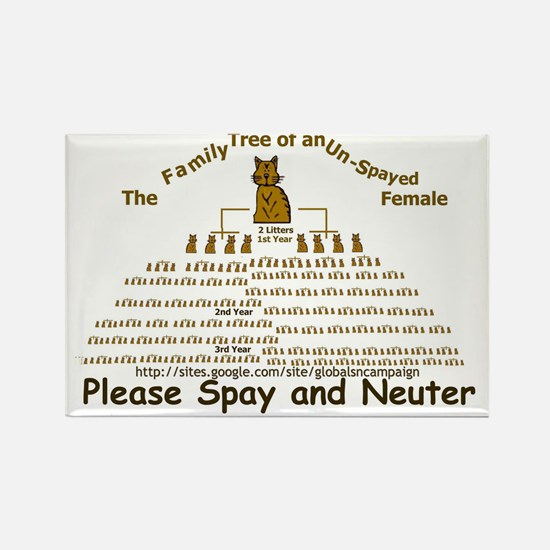 spay-ladder3-cats Rectangle Magnet