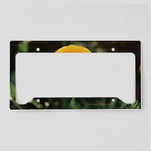 California Poppy Small Framed License Plate Holder