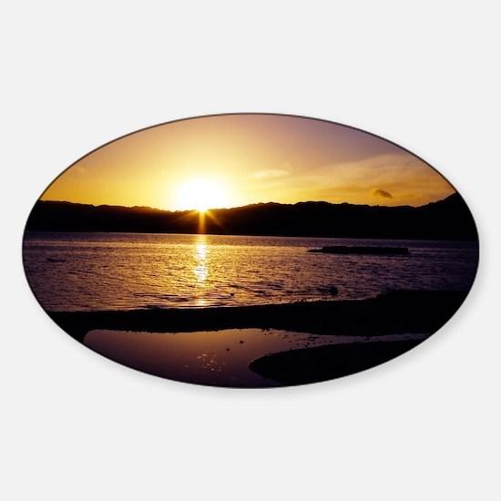 Lake-Rotorua-Sunrise-birds-182-10 Sticker (Oval)