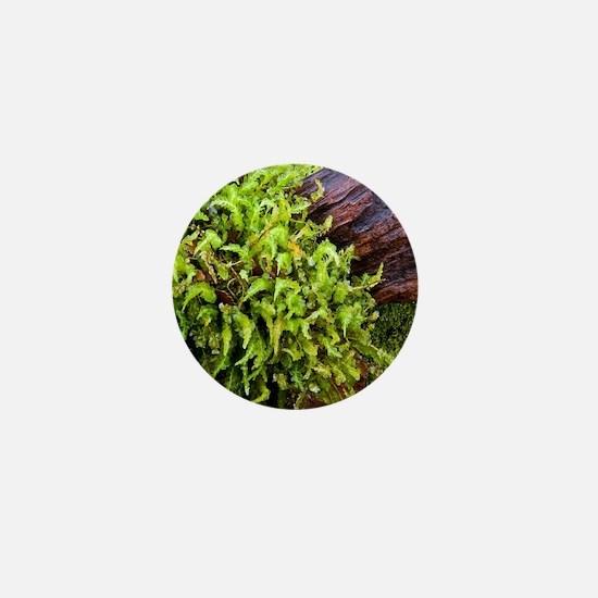 Moss--Wood1-4-5-10-7706 Mini Button