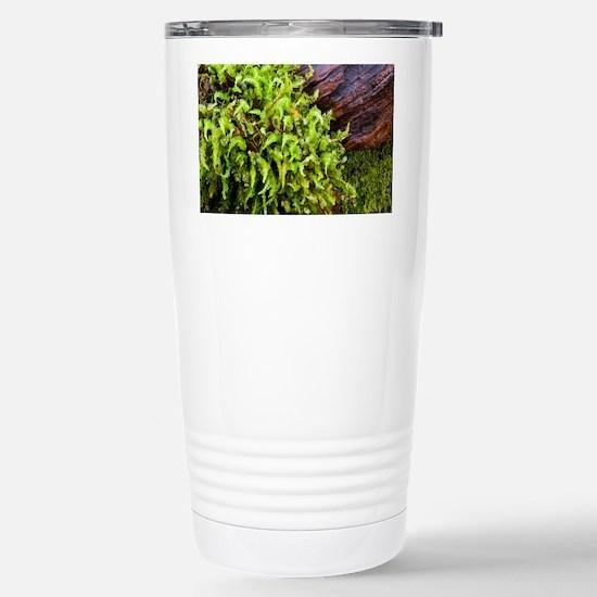Moss--Wood1-4-5-10-7706 Stainless Steel Travel Mug