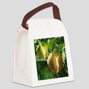 LatternFlowerMP Canvas Lunch Bag