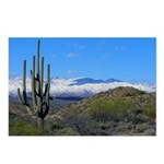 Snowy Desert With Saguaro Cactus Postcards (Packag