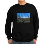 Snowy Desert with Saguaro Cactus Sweatshirt