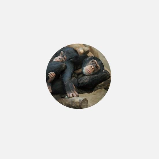 Chimpanzee006 Mini Button