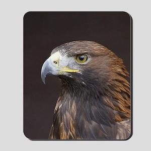 Eagle003 Mousepad