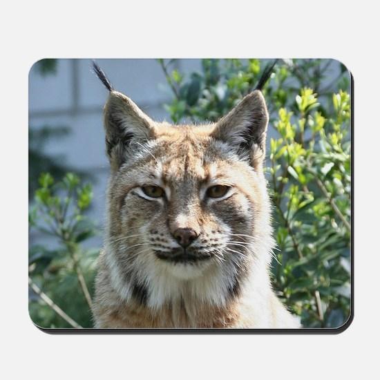 Lynx001 Mousepad