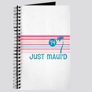 Stripe Just Mauid 14 Journal