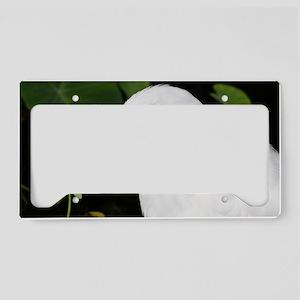 egret License Plate Holder