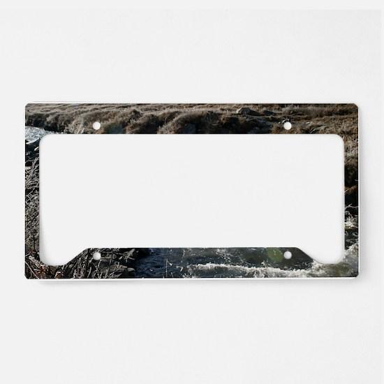 Denali_riiver License Plate Holder