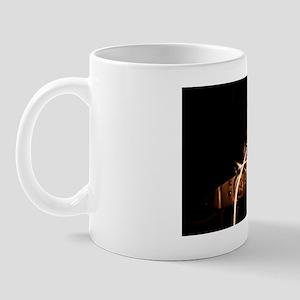 IMG_0656 full size Mug