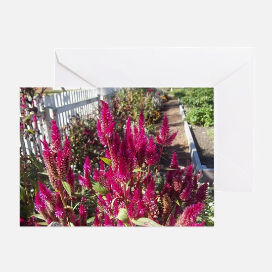 Beautiful Fall Flowers from Colonial Greeting Card