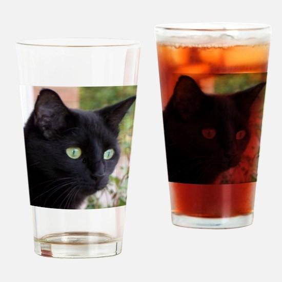 saki2 Drinking Glass