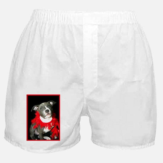 pitbull puppy Boxer Shorts