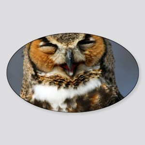 The Laughing Owl Sticker (Oval)
