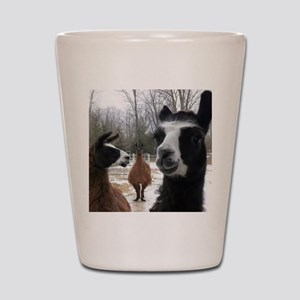 Llamas larger Shot Glass