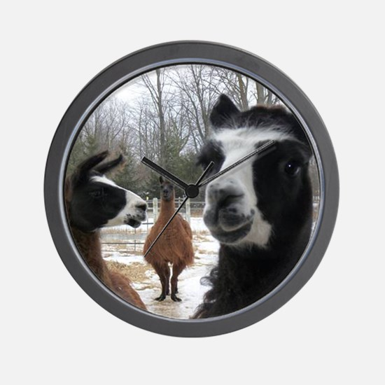 Llamas larger Wall Clock