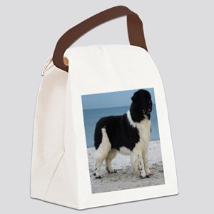 Clancy10mths 078 Canvas Lunch Bag