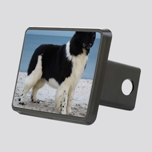 Clancy10mths 078 Rectangular Hitch Cover