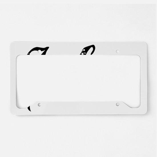 John 3-16 License Plate Holder