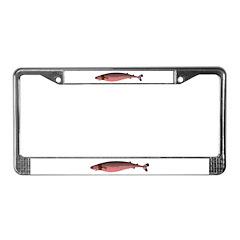 Cookiecutter Shark License Plate Frame