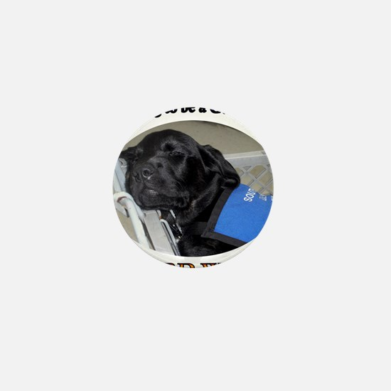 Training to be a Guide Dog Mini Button