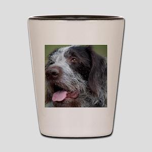 4-Daisy1 Shot Glass