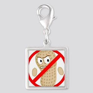 No Peanuts Food Allergy Butto Silver Square Charm