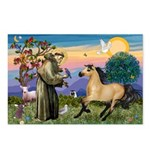 St. Francis & Buckskin horse Postcards (Package of